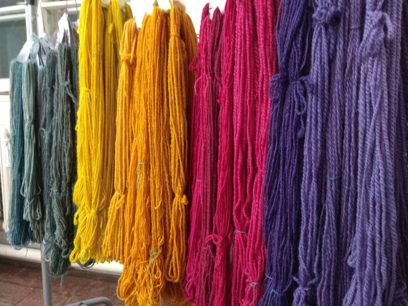 Bunte Stränge mit Naturfarben gefärber Wolle in lila, rot, orange, gelb und grün hängen an einer Kleiderstange zum Trocknen